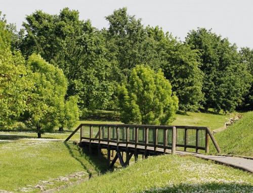 Rilievo del verde del Comune di Forlì (FC)