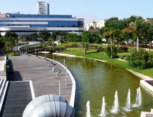Rilievo del verde del Comune di Cagliari (CA)